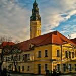 Zielona Góra – polska stolica wina, ale nie tylko