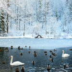 Gdzie spędzić udane ferie zimowe?