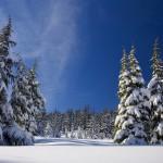 snow 1902052 1280 150x150 - Wakacje we wrześniu w Polsce - czy warto je zaplanować i gdzie pojechać?