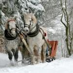 5 nietypowych pomysłów na spędzenie ferii zimowych