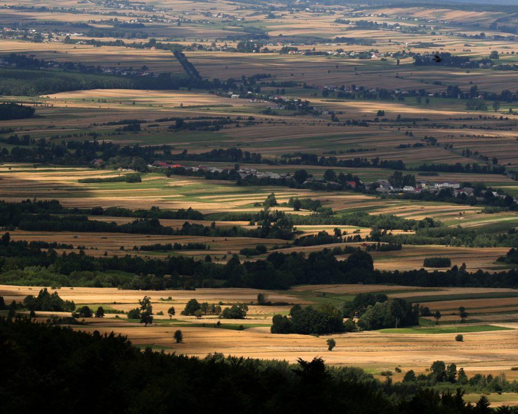 fields 1215528 1920 1024x819 - Góry Świętokrzyskie - co warto zobaczyć i zwiedzić?