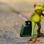 5 kroków do pozyskania gości na wakacje