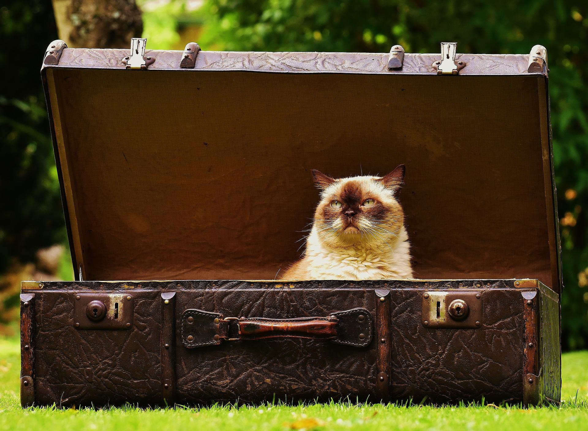 7 - Jak przygotować się do wyjazdu wakacyjnego?