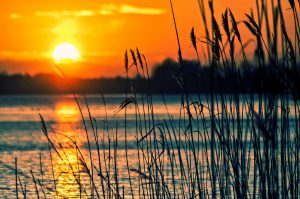 jezioro 300x199 - Wolin - nasza wyspa i jej skarby
