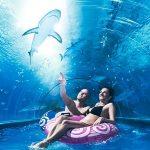 Top 5 najlepszych aquaparków w Polsce – sprawdź najlepsze miejsca dla fanów wodnych atrakcji