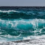 Gdzie nie wykąpiecie się nad morzem? – zakwit sinic 2018