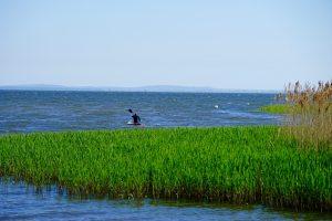 zalew szczecisnki 300x200 - Wolin - nasza wyspa i jej skarby