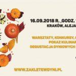 VII Festiwal Zaklęte w Dyni w Krakowie, czyli dyniowe arcydzieła