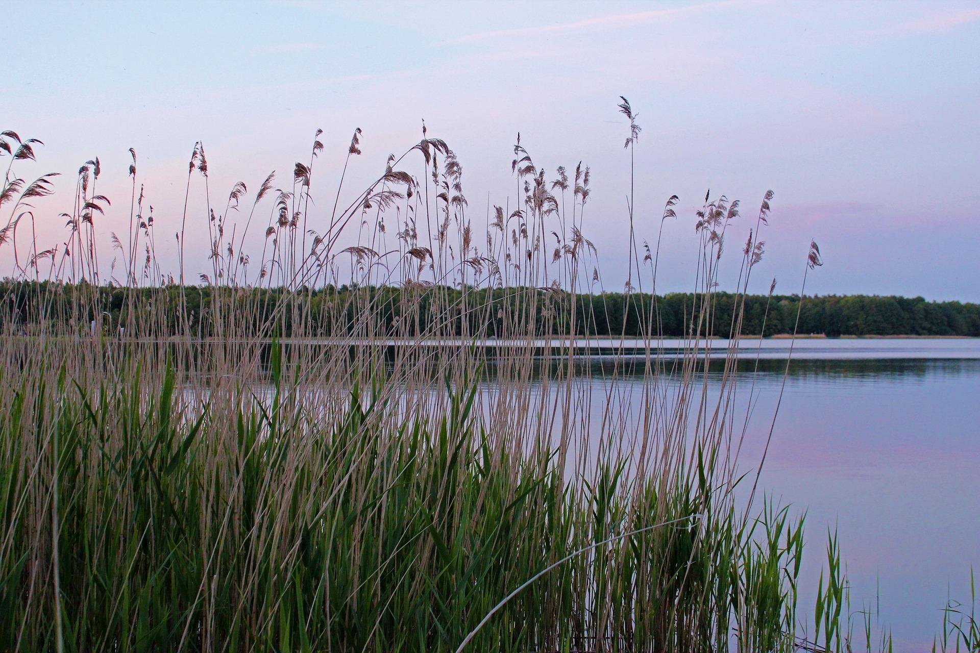lake 194738 1920 - Piękne miejsca na Pomorzu, które musisz odwiedzić