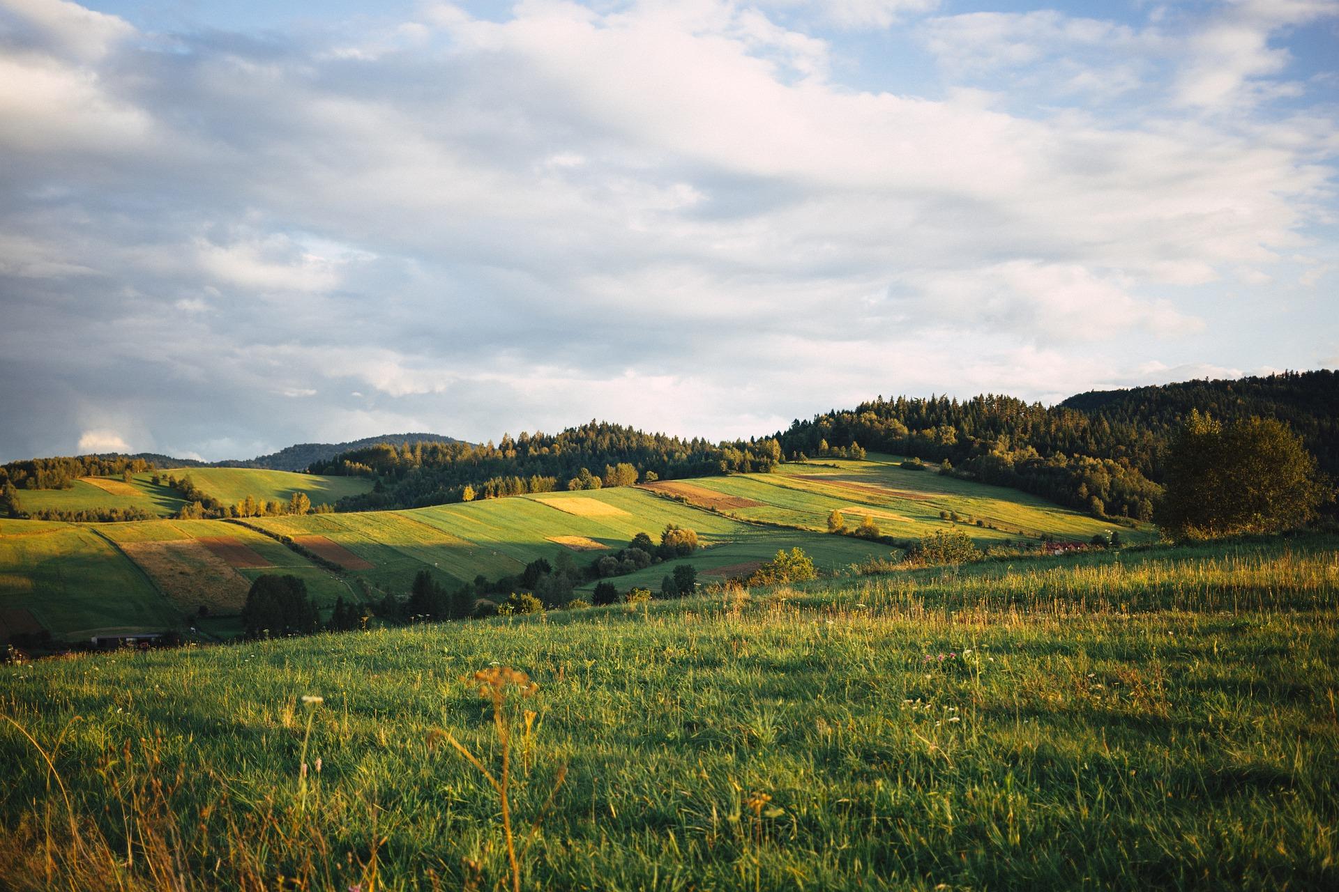 nature 2940925 1920 1 - Podkarpacie i jego 4 urocze wsie - Cisna, Rakszawa, Myczkowce, Krasiczyn