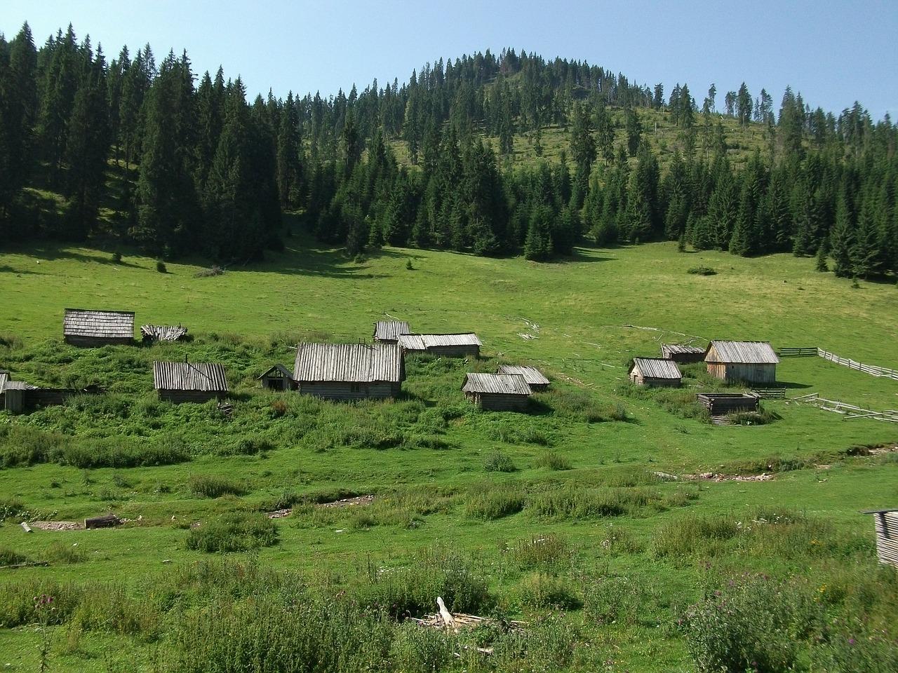 romania 643655 1280 - Podkarpacie i jego 4 urocze wsie - Cisna, Rakszawa, Myczkowce, Krasiczyn