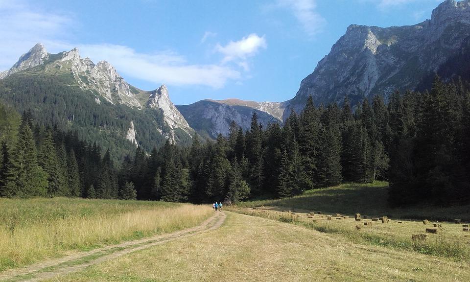 dolina małej łąki - Jakie szlaki dla początkujących w Tatrach?