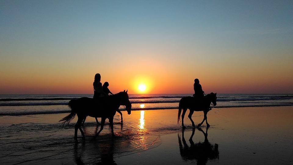 konie plaża - Aktywna majówka nad morzem - gdzie jechać, co robić