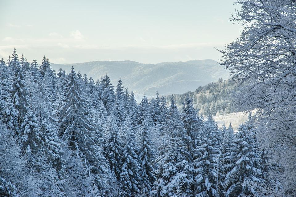 krynica - Atrakcje w Polsce, które musisz odwiedzić zimą