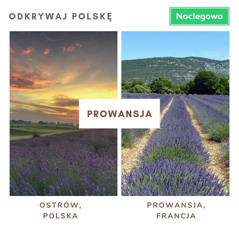Kopia odkrywaj polskę - Olśniewające miejsca w Polsce, które wyglądają jak zagraniczne.