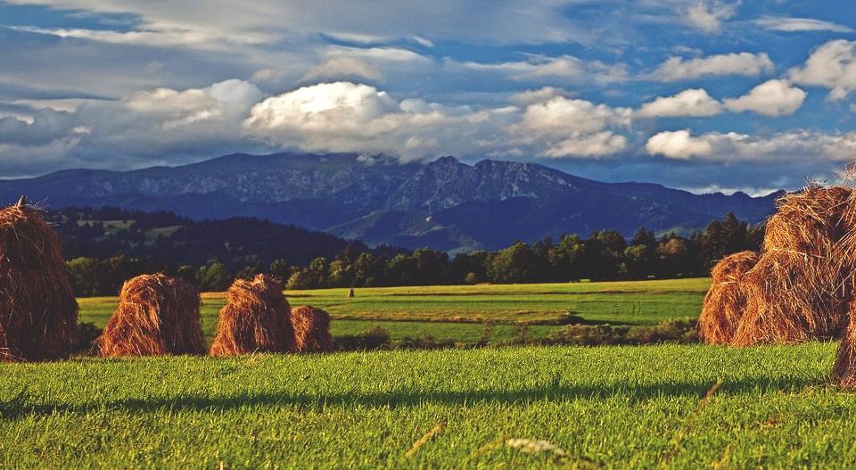 dried grass 388660 960 720 1 - Gdzie jechać jesienią? Miejsca na wrześniowe weekendy.