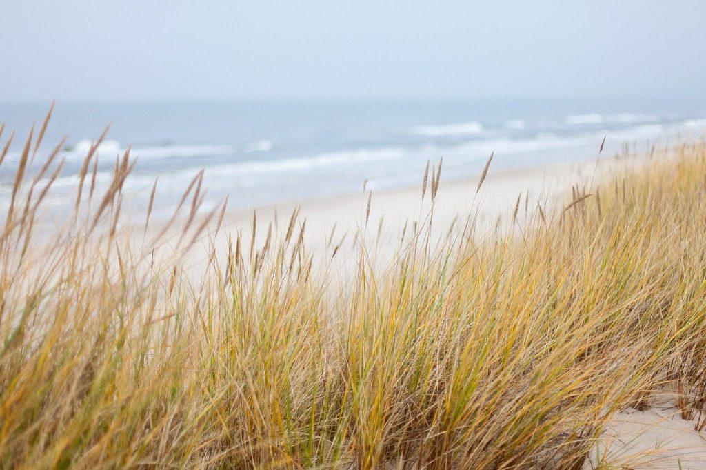 dunes 1936086 1280 1024x682 - Wakacje inaczej - Bursztynowe Wybrzeże dla każdego