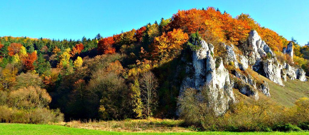 fathers 1826345 1920 1024x447 - Ojcowski Park narodowy z dzieckiem- szlaki i atrakcje