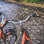 jesien rower 150x150 - Jazda rowerem zimą - czyli jak się przygotować?