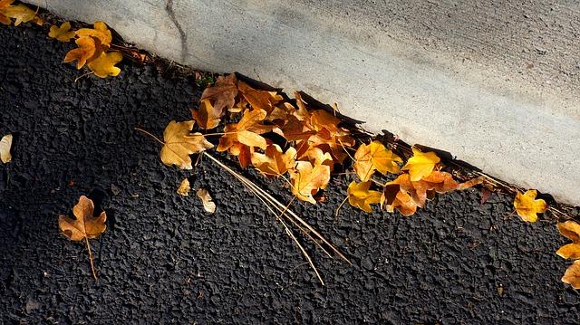 kraweznik - Jak przygotować się do jesiennych wypraw rowerowych?