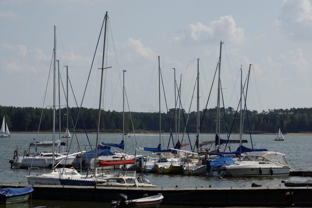 lagoon 4881077 1920 1024x683 - Zalew Sulejowski - co warto zobaczyć w okolicy?
