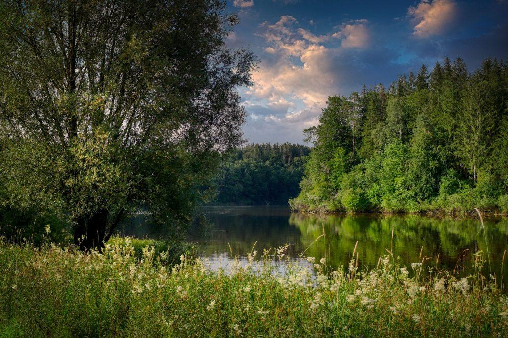 lake 5455703 1920 1024x683 - Z czego słyną Tarnowskie Góry? Podpowiadamy, co można zwiedzić na Górnym Śląsku