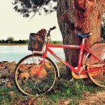 majowka 150x150 - Kielce Bike Expo - wydarzenie dla wszystkich fanów dwóch kółek
