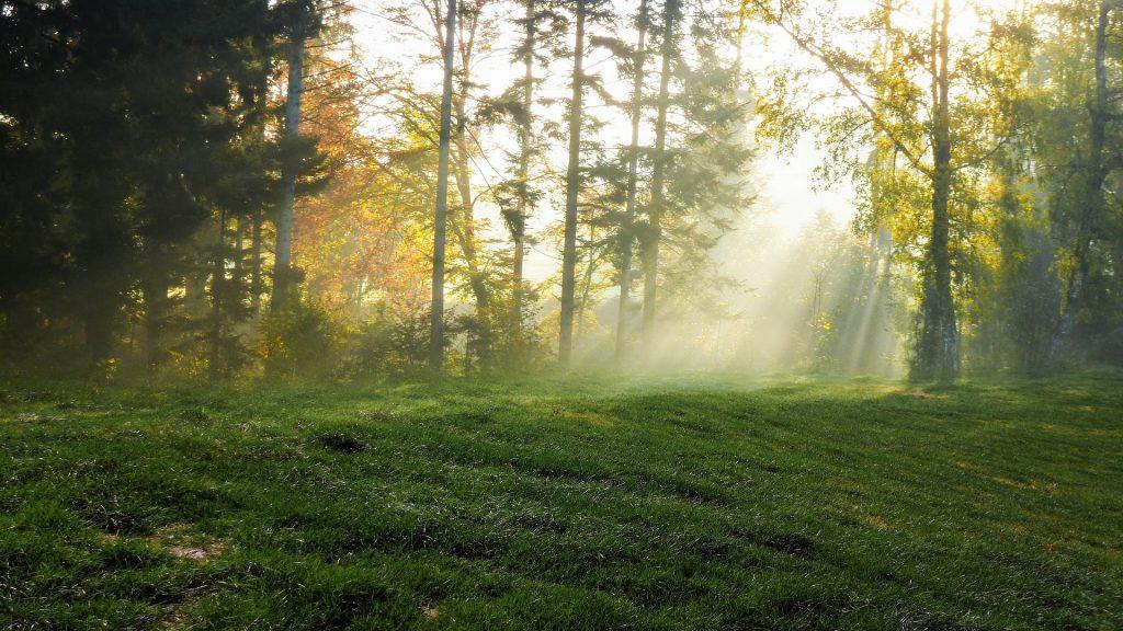 mountain landscape 4889599 1920 1024x576 - Świerklaniec - co zobaczyć? Górny Śląsk na weekend