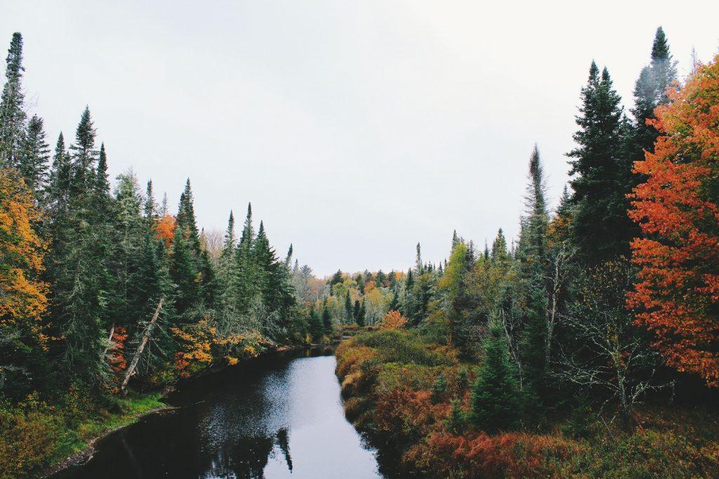 noah silliman y3IwQ9hUE4A unsplash 1 1024x682 - Jesienny weekend w górach - Beskidy.