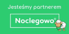 owca1 1 - Partner serwisu Noclegowo - czemu warto nim zostać?