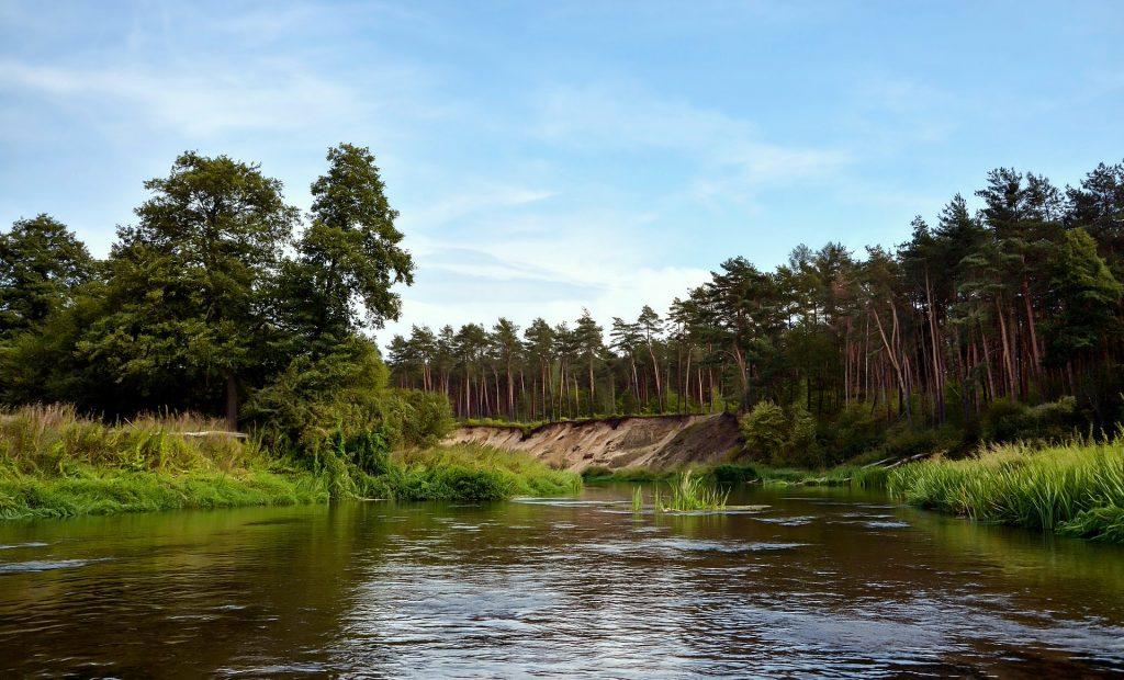 river 4444413 1920 1024x620 - Zalew Sulejowski - co warto zobaczyć w okolicy?