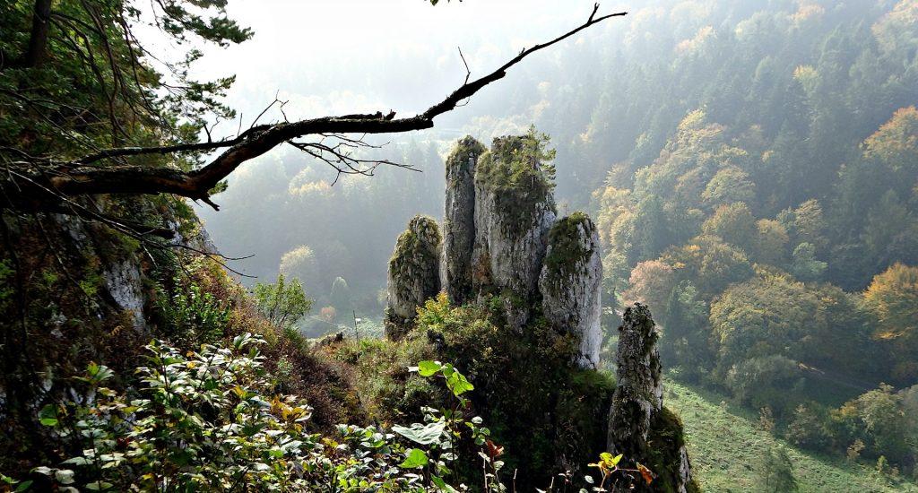 rock mitt 1082731 1920 1024x550 - Ojcowski Park narodowy z dzieckiem- szlaki i atrakcje