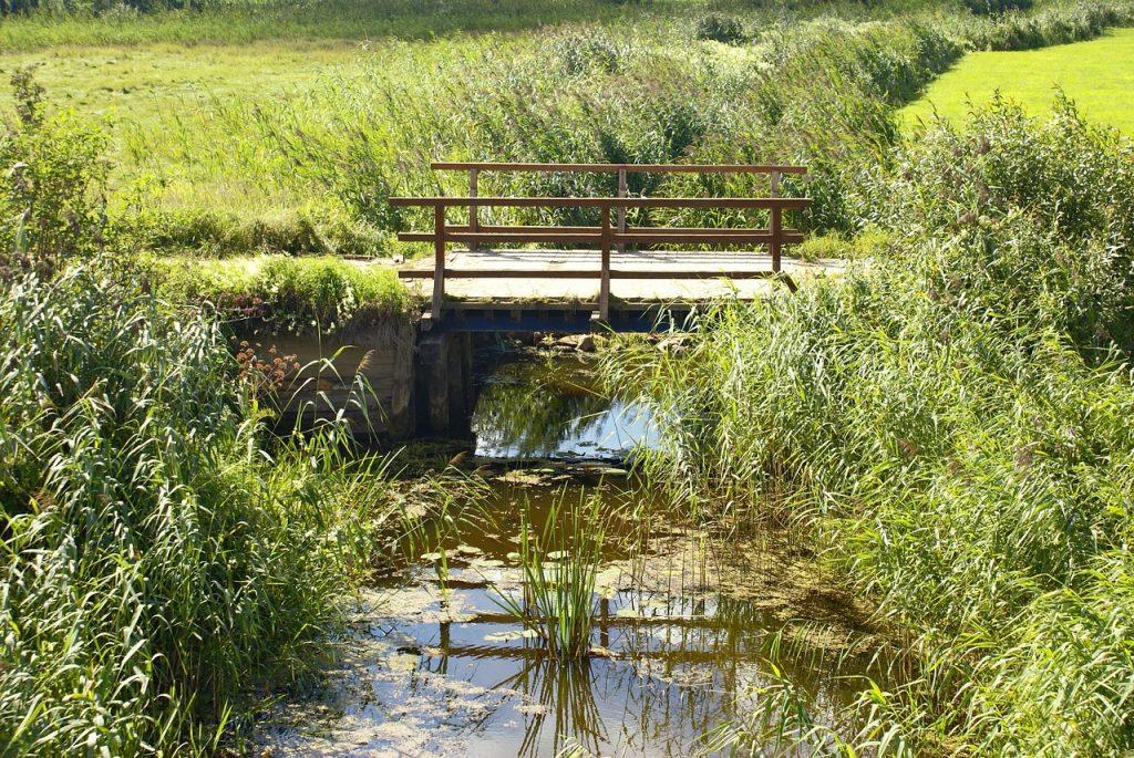 stream 1450951 1280 1024x685 - Zamek Tykocin - atrakcje Podlasia