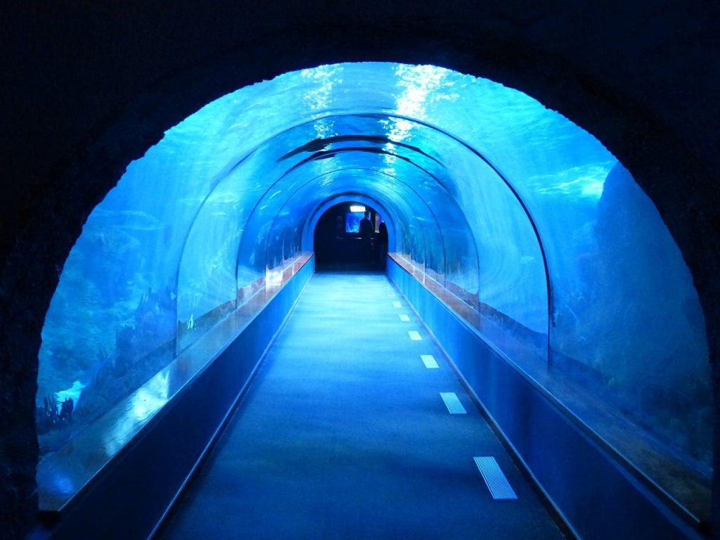 tunnel 452908 1280 1024x768 - Najlepszy aquapark w Polsce - lista TOP 5. propozycji