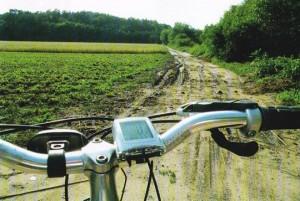 wycieczki - Typy dróg rowerowych w Polsce