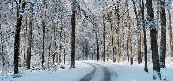Pogoda na Sylwestra 2011/2012 – ciepło i bez śniegu