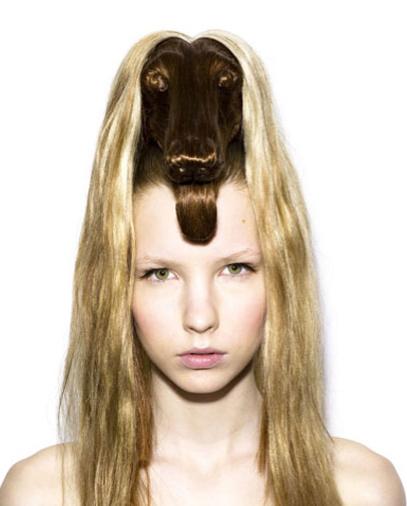Fryzura Pies Pomysły Na Sylwestra